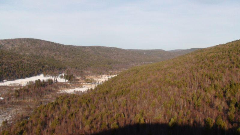 Pribaikalsk Nature Reserve