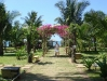 The garden of our resort in Mui Ne