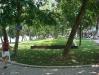 The park by Hoan Kiem lake